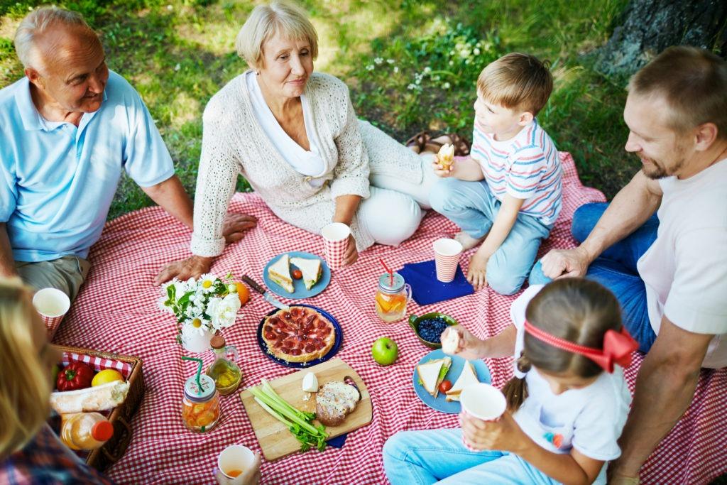 Na zdjęciu widzimy rodzinę wielopokoleniową, która siedzi na kocu i urządza piknik